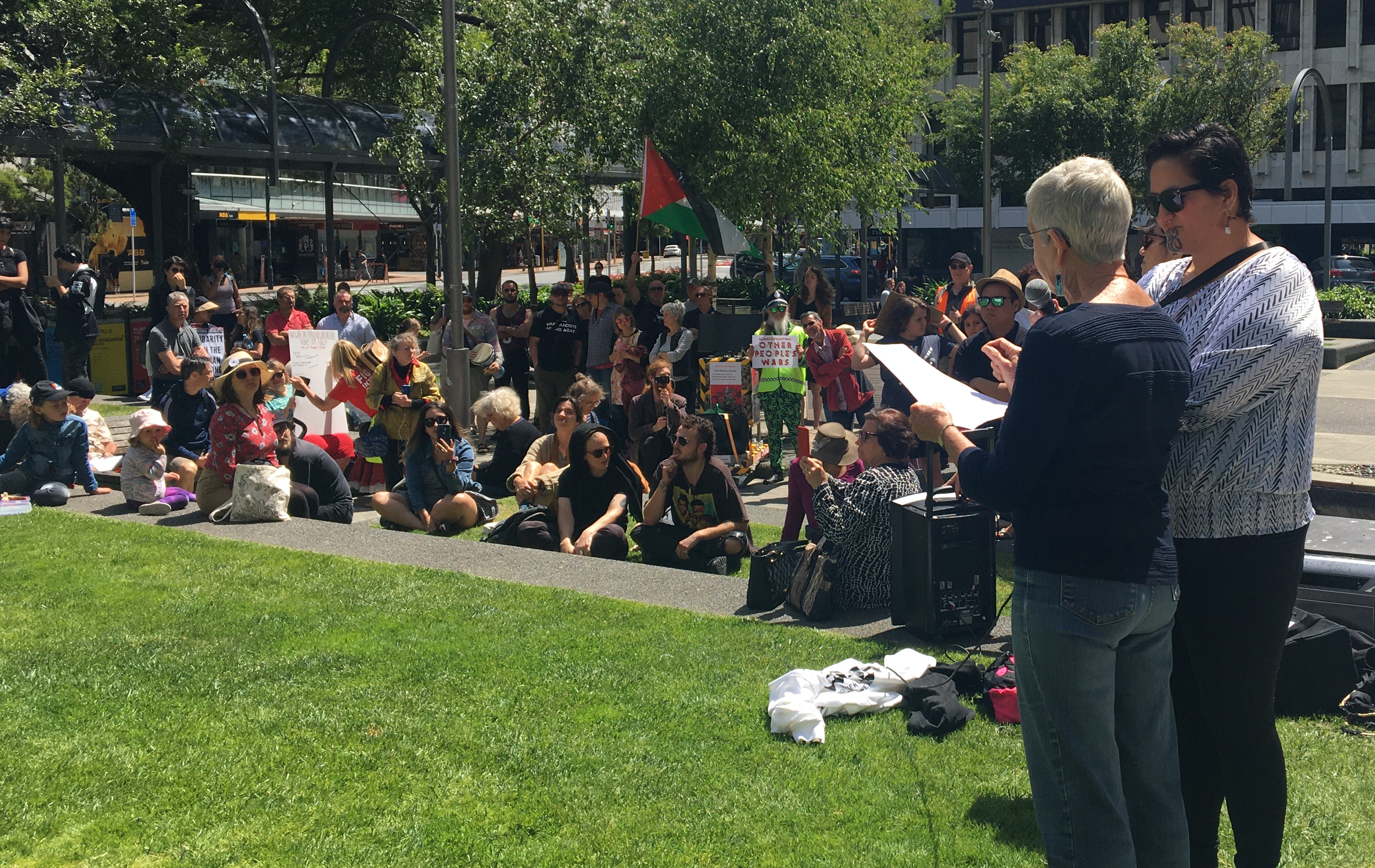 Rally in Wellington, New Zealand, 25 January 2020